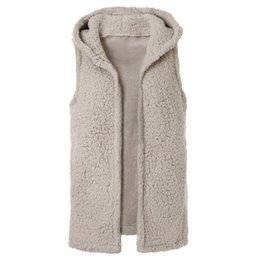 Chinese  Laamei 2019 Spring New Womens Casual Top Solid Color Sleeveless Faux Fur Vest Fleece Cardigans Coat Hoodie Short Jacket Z30 manufacturers
