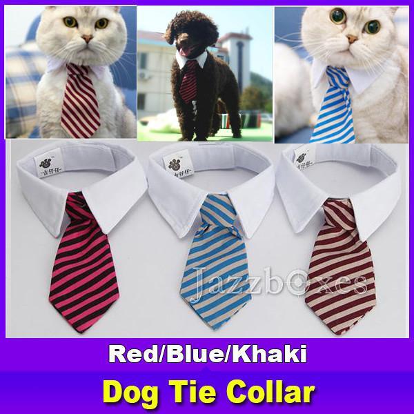 dog Tie collar