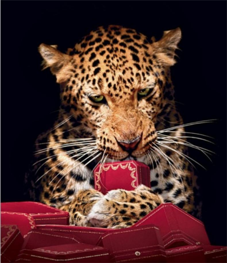 Großhandel 2017 Neue Leopard Marke Business Brillen Rahmen Halbrand ...