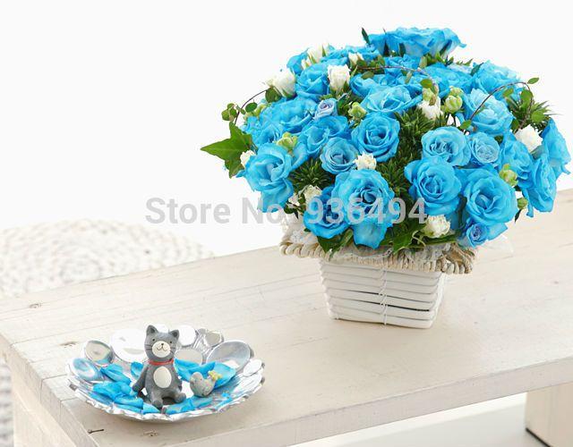 200 PCS seme di rose blu cielo, il balcone i semi di fiori bonsai più belli