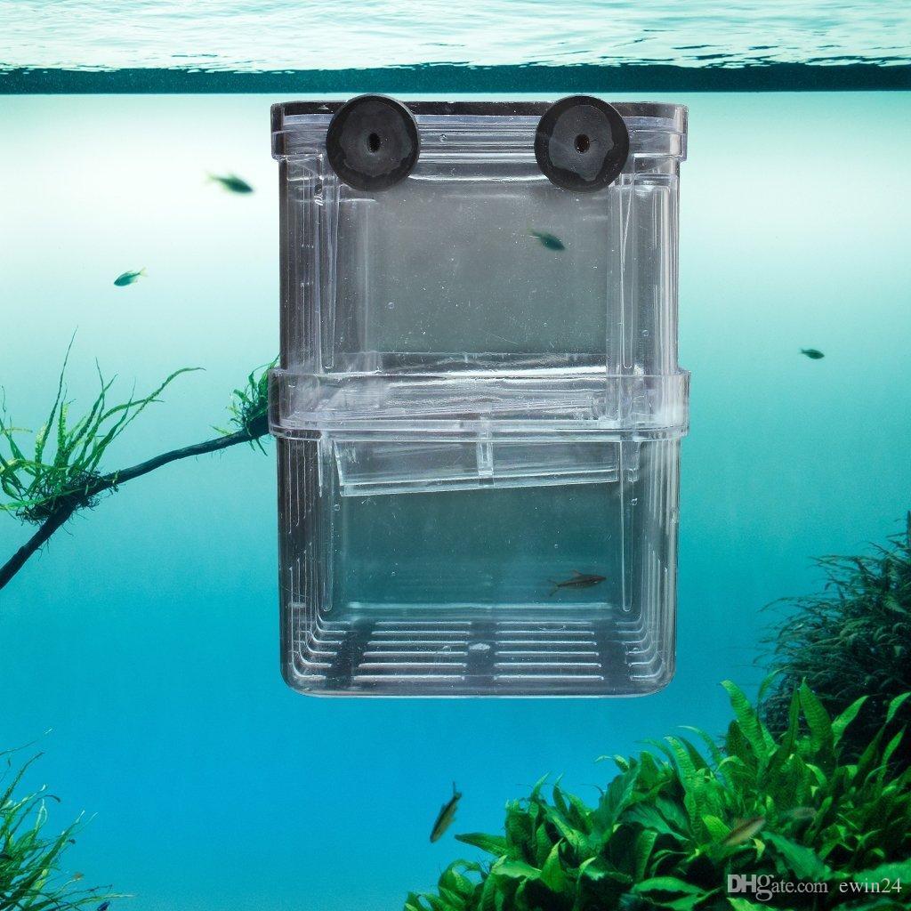 Hffheer Serbatoio di Pesce Allevamento Scatola di Isolamento Acquario Acclimatazione Incubatore di incubazione Acrilico Trasparente Acquario Incubatore di incubazione 10CM*10CM*10CM