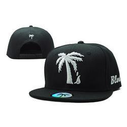 Palm Trees and Sunset 1 Children Hip Hop Visor Cap Black