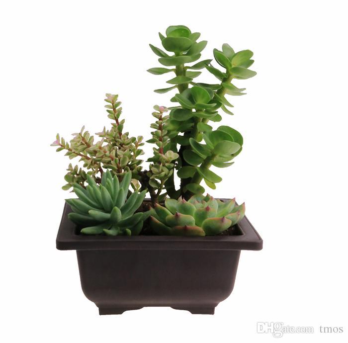 Wholesale plastic Plant pots RetroStyle Garden Pot Balcony Square Flower Bonsai Tree Planter Bonsai Training Pots Basin Deep Brown EMS free