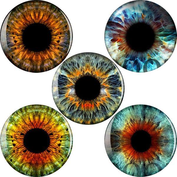 تصميم العين لسدادات الأذن خالية من النفق ثقب مقاييس هيئة المجوهرات الشحن المجاني المجوهرات السوداء الاكريليك