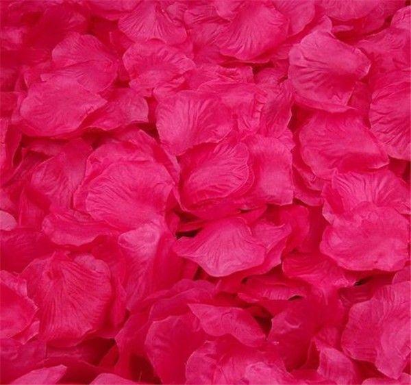 JE163C-Rose red