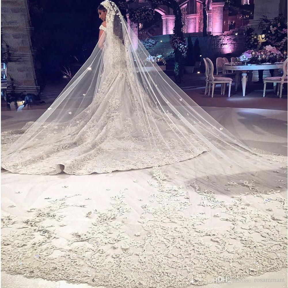 Luxury Three Meters Wedding Veils With Lace Applique Trim Long Cathedral Length Veils One Layers Custom Made Tulle Beaded Bridal Veil