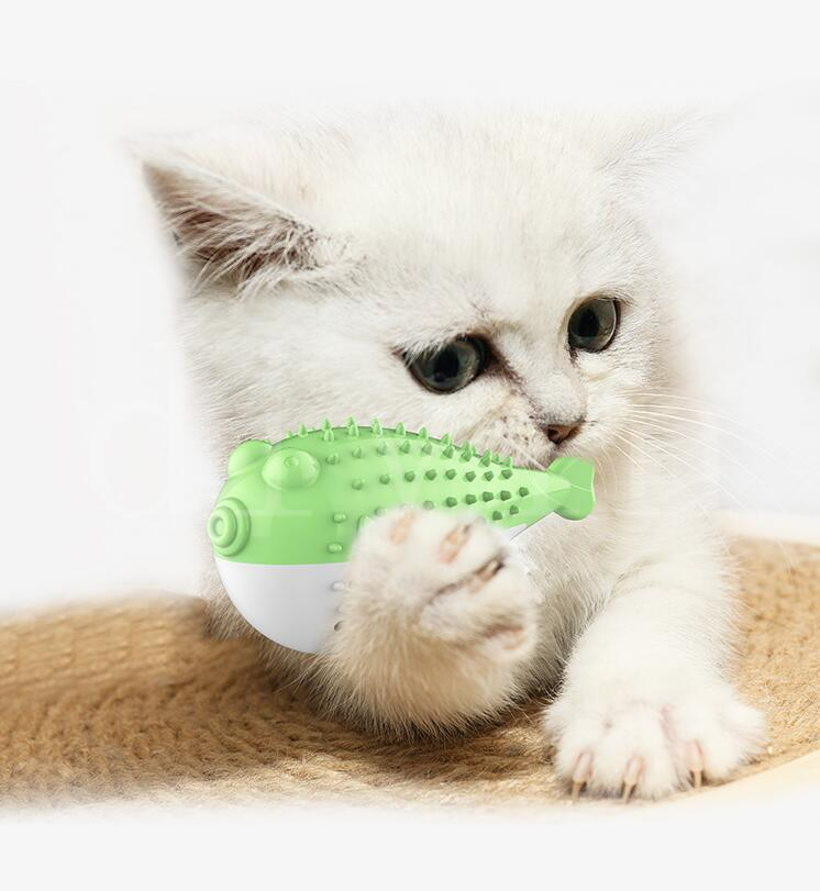 Pet Supplies Hot Art-Katze-Spielzeug Mint Imitation Fisch Katze Zahnbürste Biss Resistant Zähne Zähneknirschen