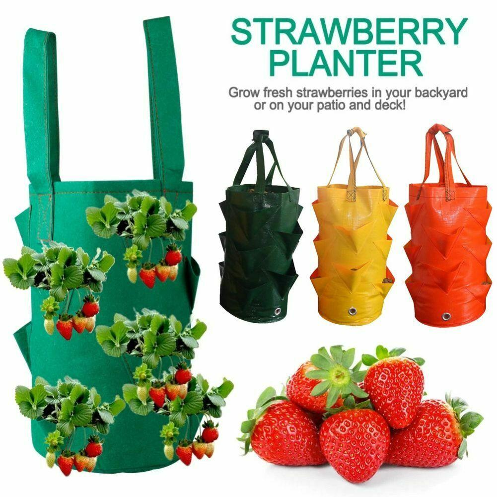 Garden Flower Herb Bags Tomato Strawberry Vegetable Hanging Wall Planter Planting Grow Bag Plant Pouch Bags