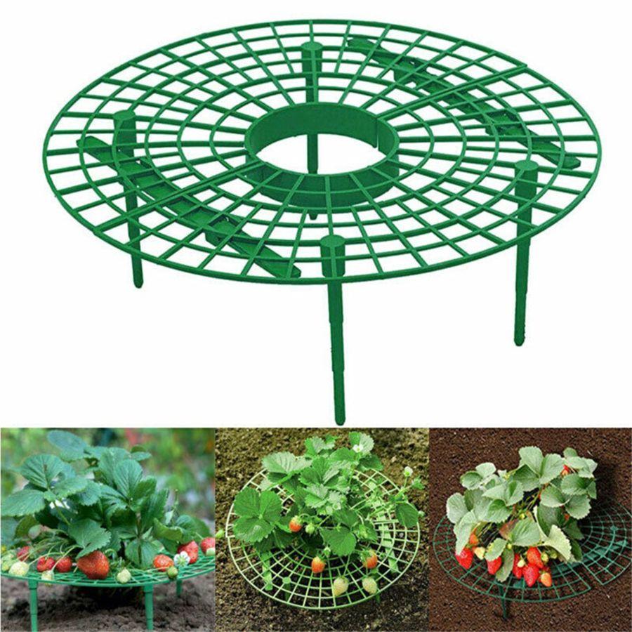 شرفة حاملة اطارات الفراولة زرعت رف فاكهة دعم نبات الزهور تسلق عمود الحدائق JK2003