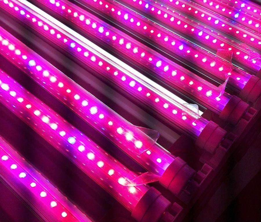 무료 배송 10pcs \ 1 많은 LED 성장 튜브 T5 T8 의료 식물과 꽃 과일 튜브에 대 한 통합 튜브 핑크 색 수경 법 빛을 성장