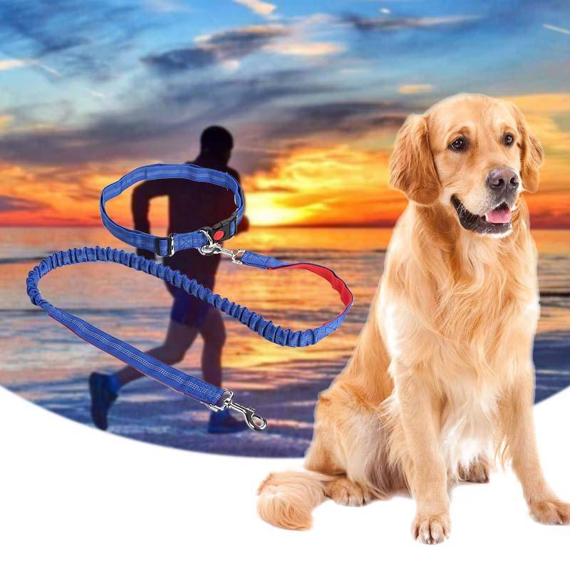 Nuovo 2019 Calda notte riflettente elastico in nylon breakaway guinzagli cintura da jogging guinzagli retrattili per cani di piccola taglia