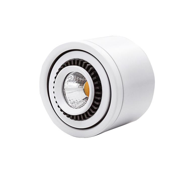 Накладные светодиодные COB вниз света 3W / 7W / 10W / 18W светодиодные лампы AC85V-265V Потолочный прожектор с LED Driver Белый / Теплый белый