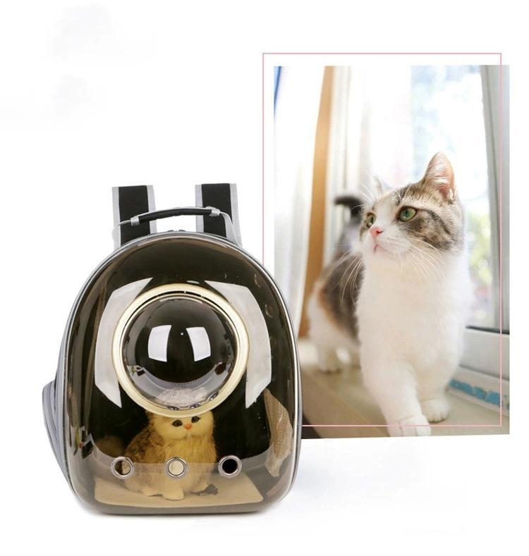 Die Pet Neue 2020 Unternehmen Farbe Katzen-Tasche Kapsel heraus Paket Panorama Transparent Katze Kaninchen Tragbarer Breath Schulter-Satz-Hund und Katze
