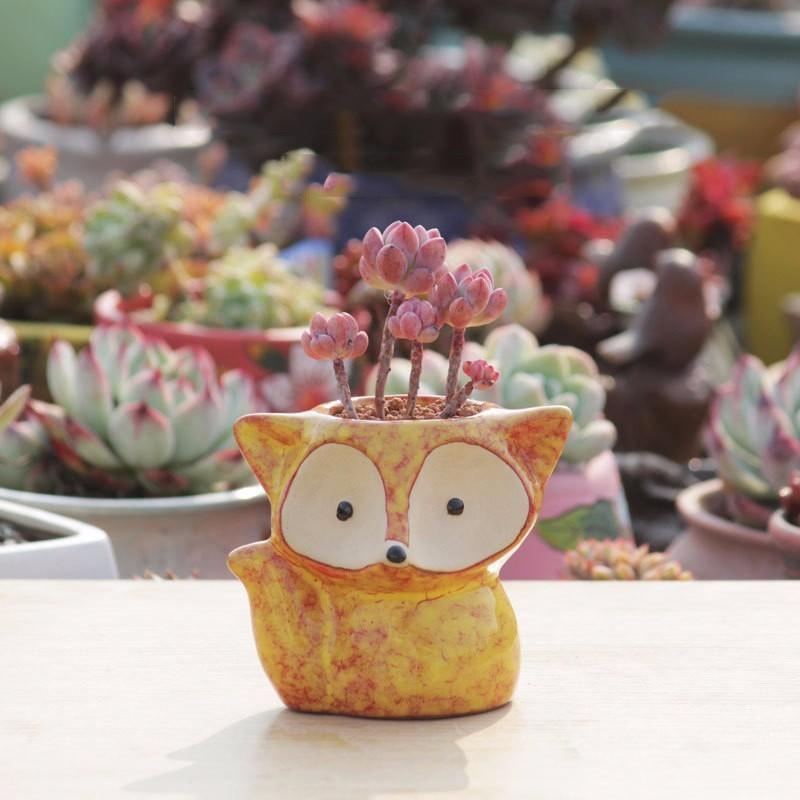 Ceramics Chinese Bonsai Flower Pot Plant Flowerpot Garden Home Decoration Decor
