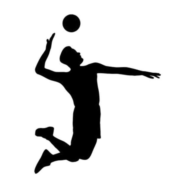 13.7 cm * 17.3 cm Juego de voleibol Deporte decoración Etiqueta de auto Accesorios para auto Negro / Plateado CA-622