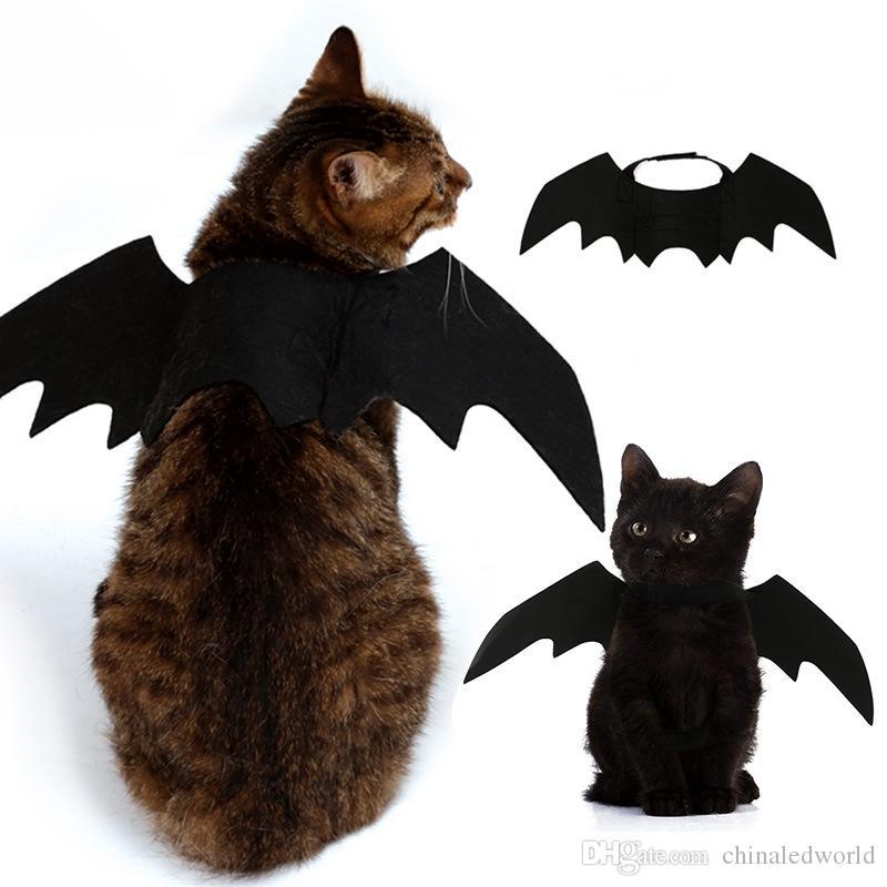 زي هالوين الحيوانات الأليفة أجنحة الخفافيش القط زي الخفافيش