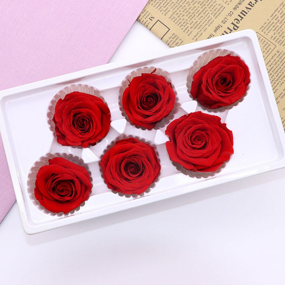 6Heads / Caja 5-6cm preservada flores de Rose Flor Inmortal Rose 5 cm de diámetro Madres flor de la vida eterna del regalo del día de material Caja de regalo