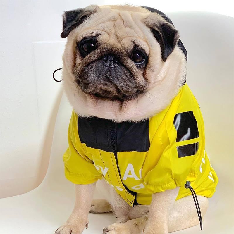 Fashion Frenchbulldog Raincoat Pet Dog Clothes for Small Dogs Clothing Chihuahua Jacket Pug Hoodies Costume Dropshipping PC1364 T200101