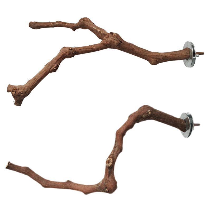 Parrot piedi di legno del bastone Pet Bird Cage Perch Cockatiel Parrocchetto Claw Grinding Giocattoli