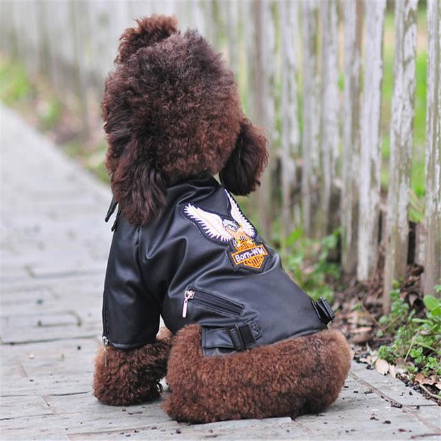 Gloriosa águia padrão Dog Brasão PU jaqueta de couro macio à prova d'água roupas filhote de cachorro Outdoor Casacos de moda para animal de estimação pequeno (S-XXL)