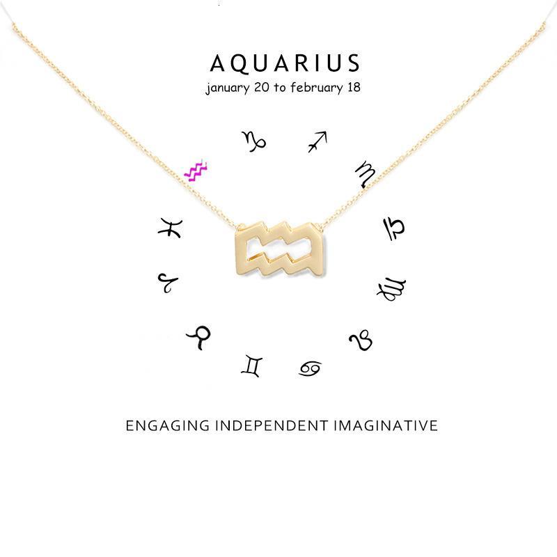 12 ожерелье Созвездие Ожерелье Водолей Ожерелье для женщин ключицы Choker ожерелья карты подарок на день рождения
