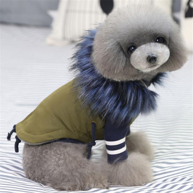 Winter-Kleidung Luxus-Pelz-Kragen-Mantel für kleine warmen Winddichtes Haustier Parka mit Fleece-Futter Puppy Jacke Hunde-Kleidung Y200330