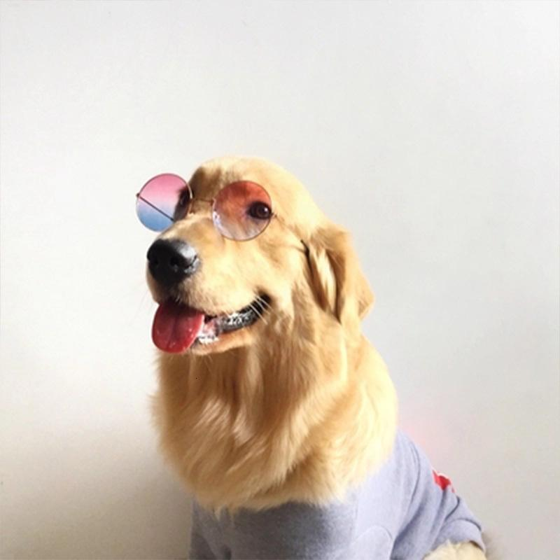 2020 Medium Large Dog Glasses Pet Accessories Pet Sunglasses Cheap Pets Acessorios Cat Dog Glass Pets Products Dogs Accessories From Jie123jie 6 04 Dhgate Com