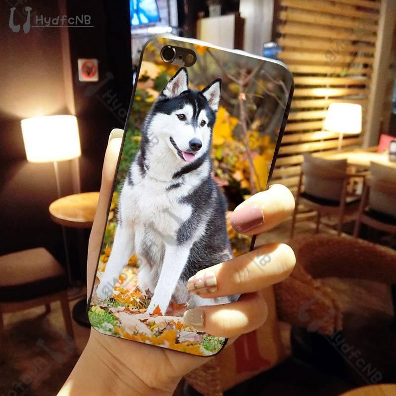 2020 Loup animal Husky chien silicone de haute qualité Téléphone pour iPhone 11 pro XS MAX 8 7 6 6S Plus X 5 SE XR 5S commerce de gros