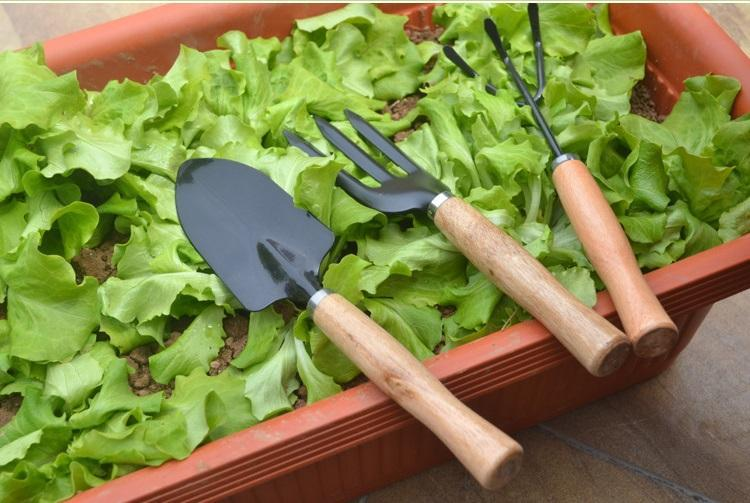 3Pcs/Set Mini Sharp Shovel Rake Wooden Handle Iron Head Plant Tool Set Reinforced Gardening Round Mini Garden Tools