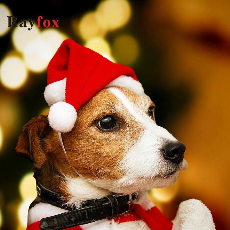 Navidad Decorações de Natal chapéu de Papai Noel Para Cap Pet Feliz Puppy Dog Cat enfeites de Natal Dekoration Ano Novo