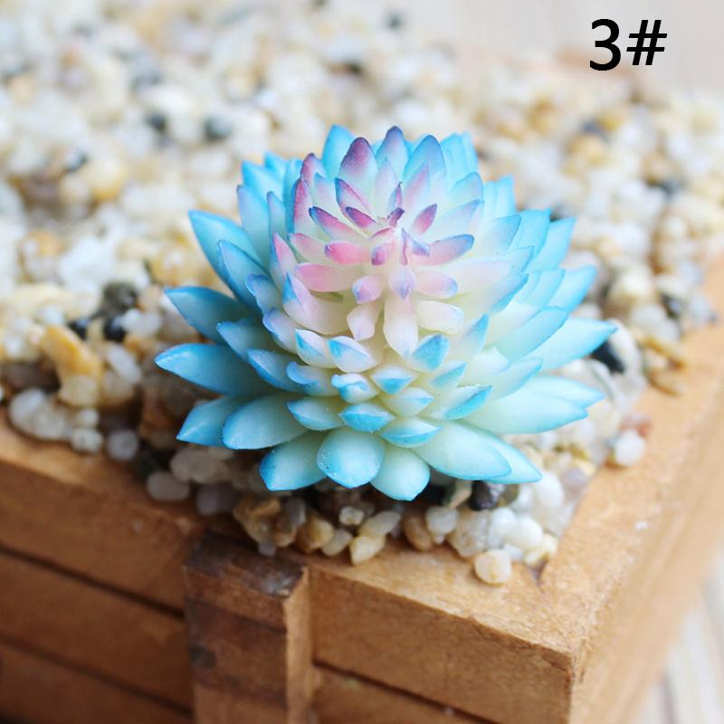 vb Odası Tablosu, ofis, Yemek Yapma Plastik Sulu Bitki Sinocrassula Çiçek Ev Ofis Dekoru Hediye Sehpa,.