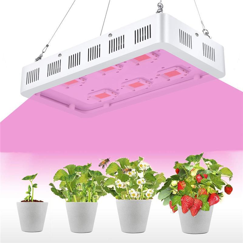 1200W 1500W 1800W 2700W 3600W LED 성장 온실 및 실내 식물 꽃에 대 한 램프를 성장에 빛 스펙트럼을 성장