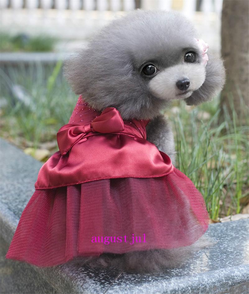 Robe de mariée récent Pet jupe robe de chien Princesse Pengpeng Jupe Tideway mode Onirique Dog Dress Femme dentelle Vêtements