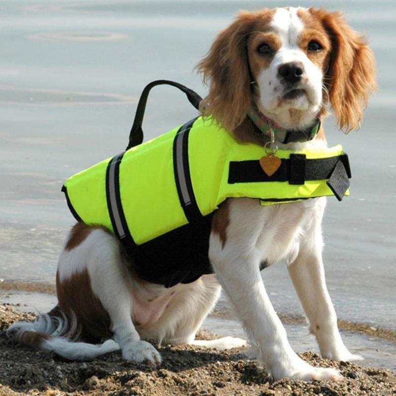 Chaqueta para mascotas La vida del perro ropa de seguridad chaleco de vida del collar del perro del arnés del animal doméstico del ahorrador del conservante de natación del traje de baño ropa de verano
