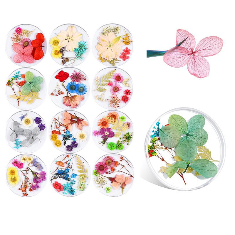 Mix Kuru Çiçekler Tırnak Süsleme Takı Doğal Çiçek Yaprak Etiketler 3D Nail Art Lehçe Manikür Aksesuarlar Tasarımları
