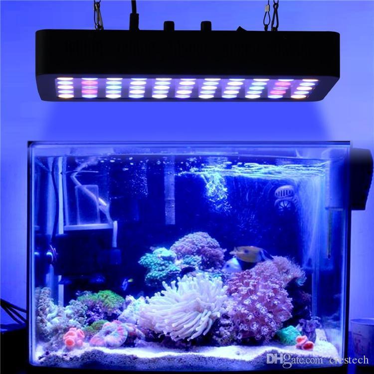 화이트 블루와 물고기 탱크 산호초 민물에서 성장과 바닷물을위한 LED 수족관 빛 165W 전체 스펙트럼 디 밍이