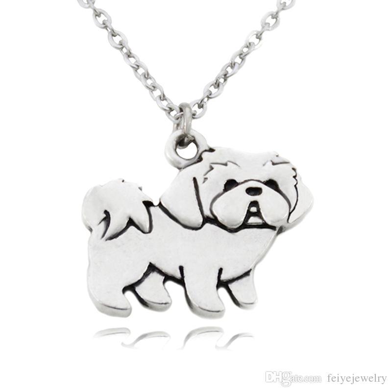 collier pour chien shih tzu