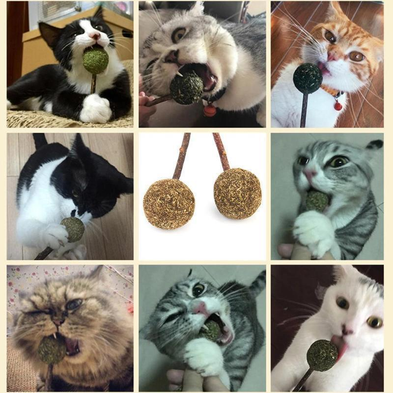 Pet Cat Catnip Candy Toy Teeth Cleaning Snack Natural Mint Ball Stick Rod Toy For Cat Kitten Health Care Cat Product With It Toy
