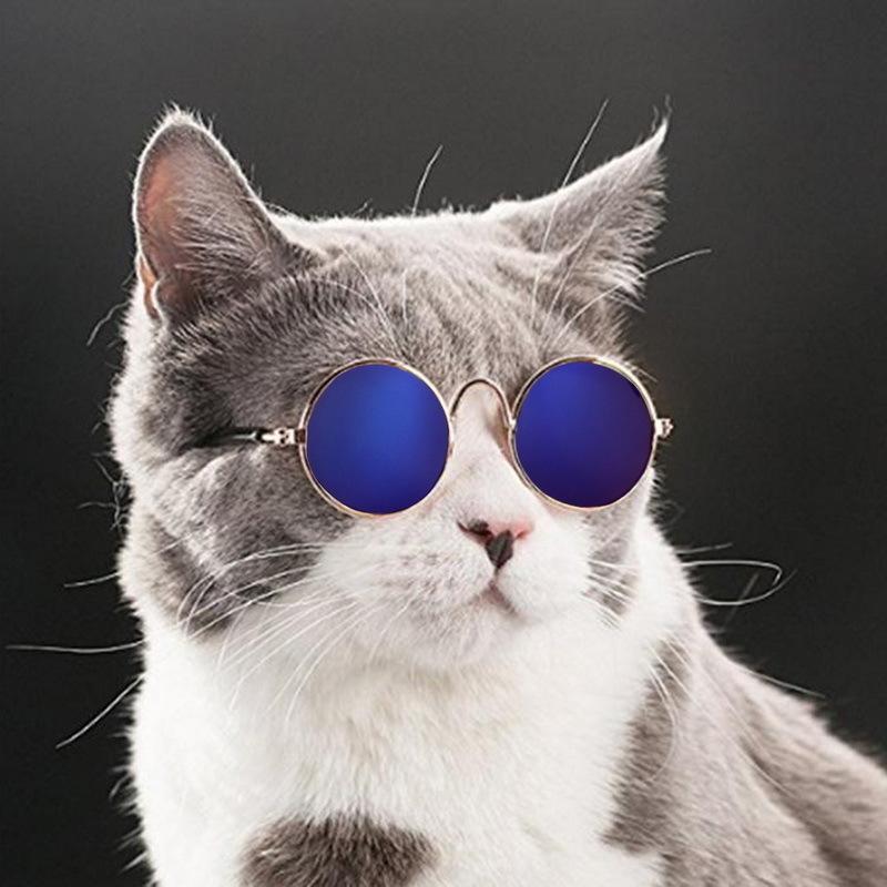 Hoomall Lovely Pet Cat Очки Очки для собак Зоотовары для маленькой собаки Cat Eye-wear Солнцезащитные очки для собак Фотографии питомцев C19021302