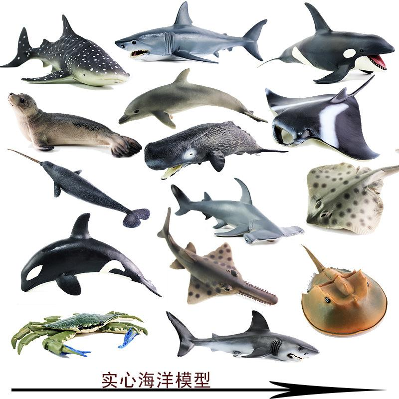 Model Marine Organism Animal Model Toy Polar Bear Killer Whales Great White Shark Fish Turtle Dolphin Blue Whale