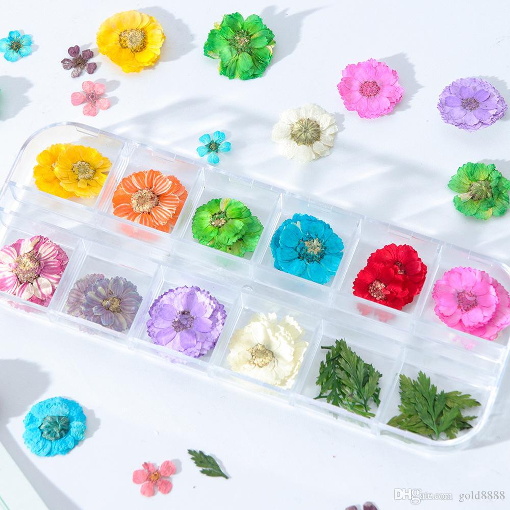 Nail Art Decoración de flores secas 3D manicura polaca de verano real preservada hoja floral mezclado en seco Consejos Bloom