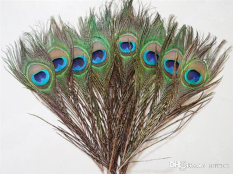 Zarif dekoratif malzemeler Gerçek Doğal Tavuskuşu Tüyü Güzel Tüyler yaklaşık 25 ila 30 cm ücretsiz kargo