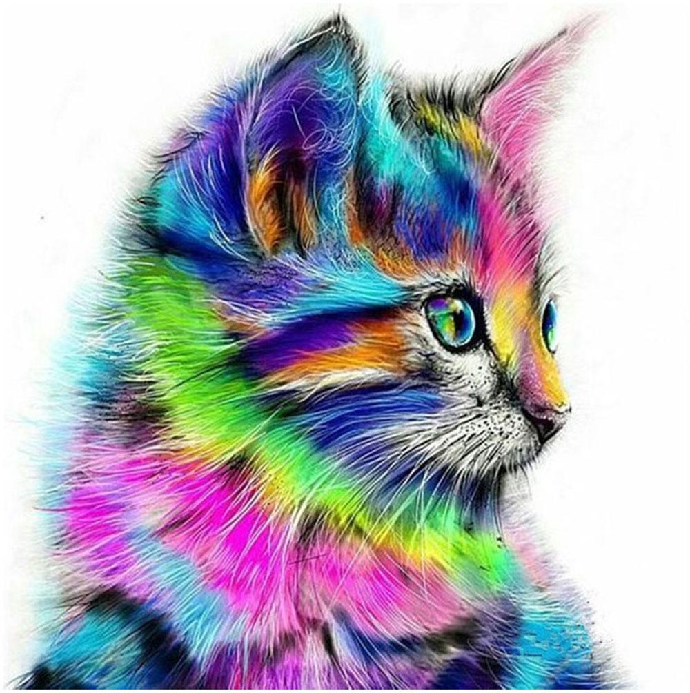 """Adult Hand Painted Oil Paint DIY Painting By Numbers Kits Paint-Colorful side cat 16""""x20"""""""