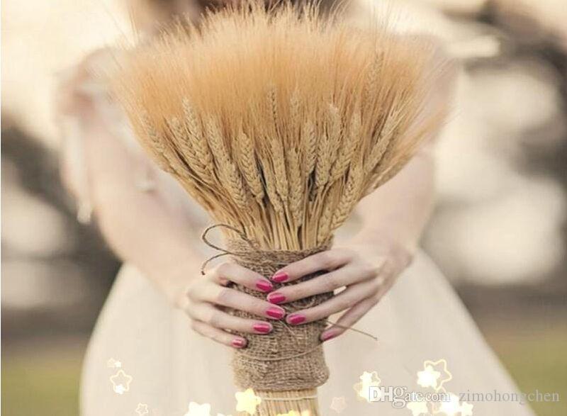 200pcs secas naturales ramos de la flor seca del oído del color crudo natural de ramos de trigo, trigo orejas Racimos la decoración del hogar de los apoyos
