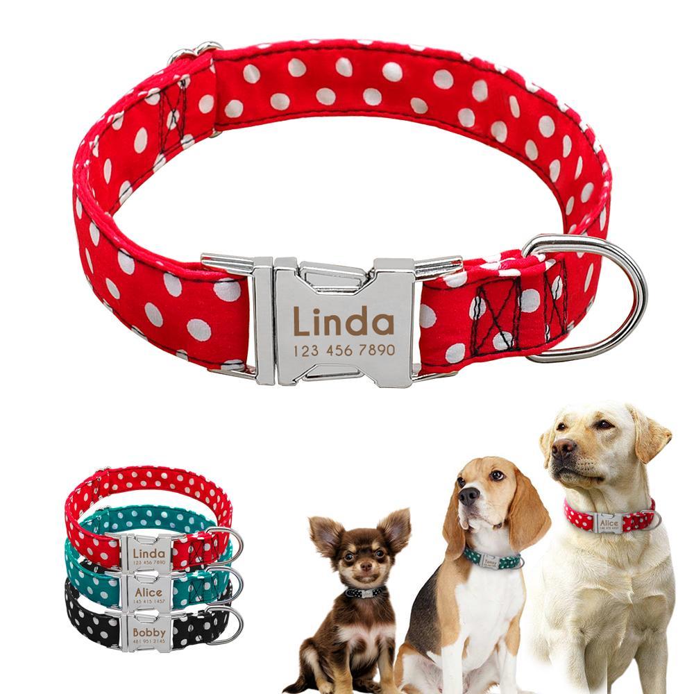 """Cachorro Perro Plomo Y Collar para los perros pequeños. .3//4/"""""""