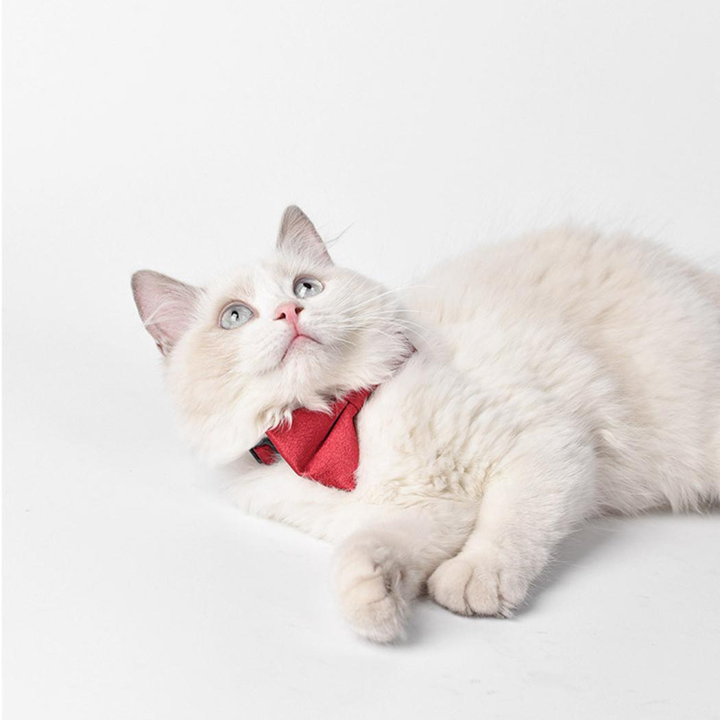 Pet Fashion Bowtie Vendu couleur vintage réglable de chien Noeud papillon Collier pour chien cravate chiot Bowtie col cravate