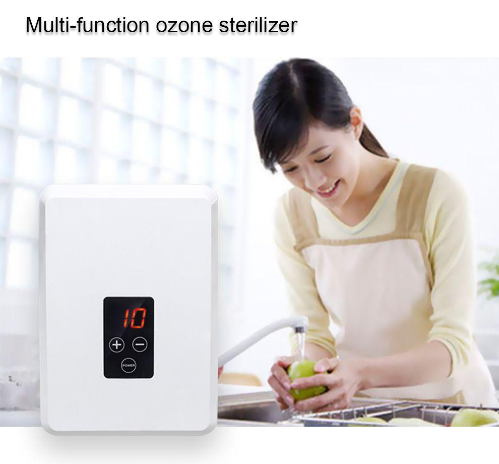 오존 발생기 과일 야채 세척 탈취 해독 기계 가정용 정수기 홈 오존 세탁기
