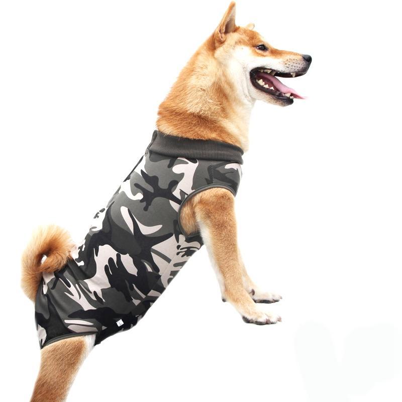 Il recupero del vestito del cucciolo del cane Cura Suit Abbigliamento e dopo l'usura Anti leccata le ferite Aiuto pilastro di guarigione Operativo