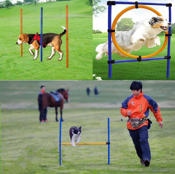 أحدث ثلاث قطع الإمدادات تدريب الكلاب رشيقة المعدات الحيوانات الأليفة في الهواء الطلق معدات تدريبية واحدة حلقة القطب قفزة قفزة حول كومة