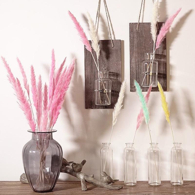 15pcs Bulrush Natürliche getrocknete kleine Pampasgras Phragmites Künstliche Pflanzen Hochzeit Blumen-Bündel für Hauptdekor Fake Flowers 1